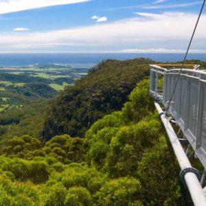 Illawarra Fly Treetops
