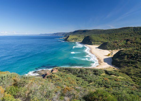 Environmental Change & Management Garie Beach